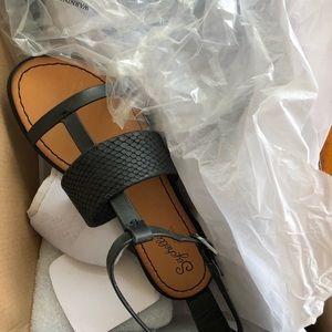 Seychelles puzzle t strap sandals